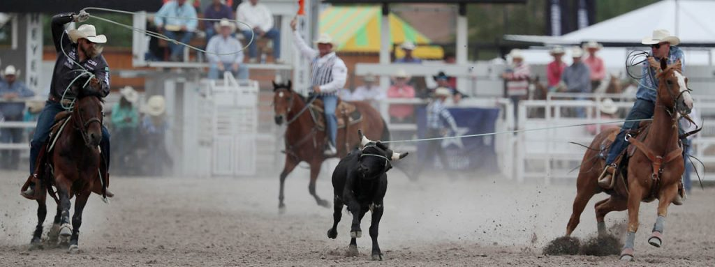 Jeremy Buhler and Levi Simpson score a 9.8 while competing in team roping during a Cheyenne Frontier Days rodeo.